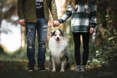 berger-australien-famille-julie-crenn